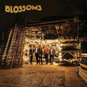 Blossoms - Blossoms LP