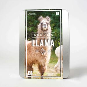 Adoptiere ein Lama Geschenkset