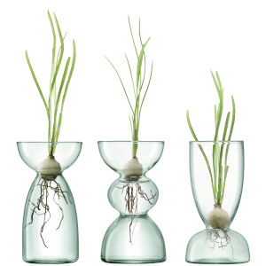 LSA International Canopy Clear Trio Vase Set - 13cm