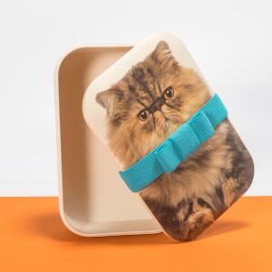 Fat Cat Bento Box