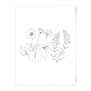 Wild Flower Line Art Art Print