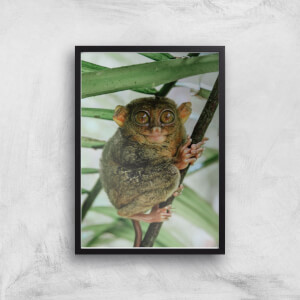 Those Big Brown Eyes Giclee Art Print