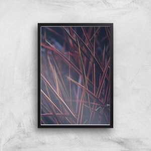 Amongst The Grass At Night Giclee Art Print