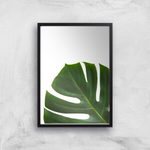 Leaf Section Giclee Art Print