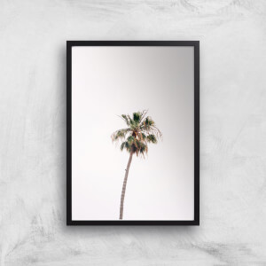 Lonely Palm Tree Giclee Art Print