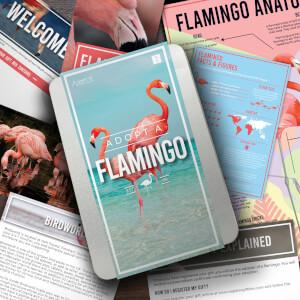 Adopt a Flamingo