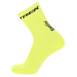 Santini Trek Segafredo Training Medium Profile Socks