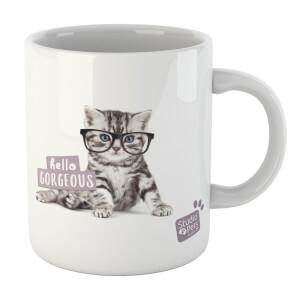 Studio Pets Hello Gorgeous Mug