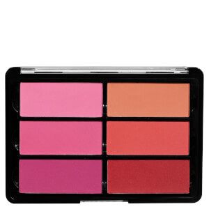 Viseart Palette 6 Blush Palette 02 Rose- Coral