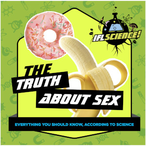 The Truth About Sex Gift Book