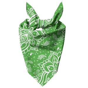 Bright Green Paisley Dog Bandana