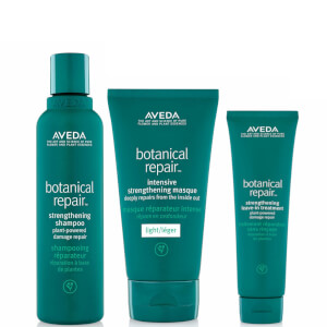 Aveda Botanical Repair Routine