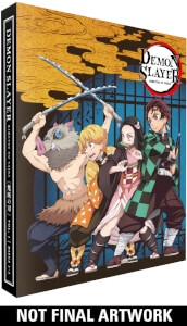 Demon Slayer Kimetsu no Yaiba  - Part 1 Collector's Edition