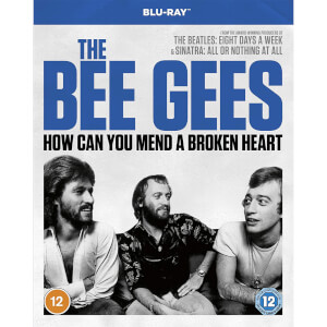 Bee Gees: How Can you Mend a Broken Heart