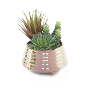 Large Potted Plant - Gold & Blush