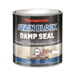 Thompsons Damp Seal - 250ml