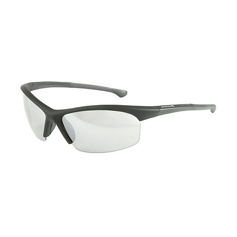 Stingray Glasses - Black/None