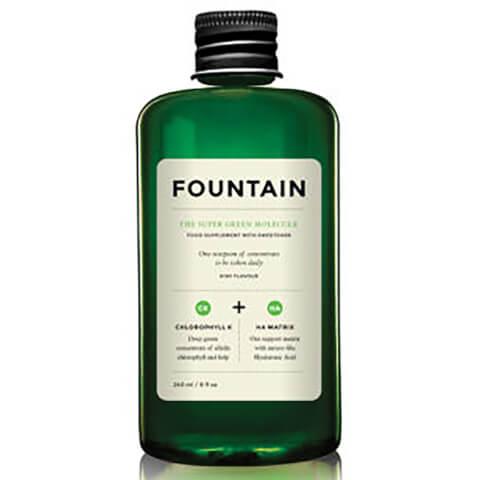FOUNTAIN | FOUNTAIN The Super Green Molecule (240ml) | Goxip