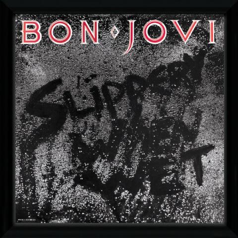 Bon Jovi Slippery When Wet Framed Album Cover - 12