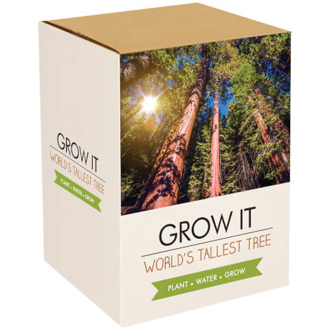 Grow It: Worlds Tallest Tree Gift Box