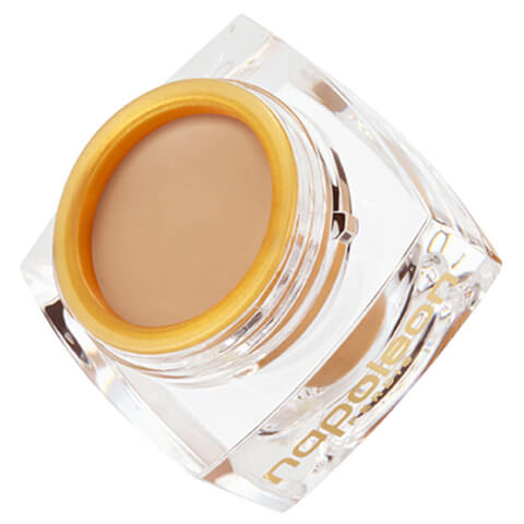 Napoleon Perdis The One Concealer - Light 5.2g