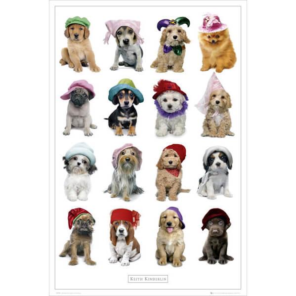 Keith Kimberlin Hats - Maxi Poster - 61 x 91.5cm
