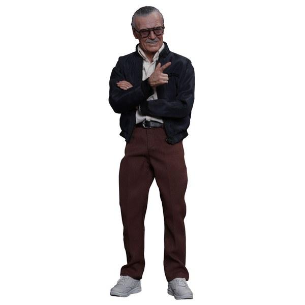 Stan Lee Movie Masterpiece Figure 30 cm