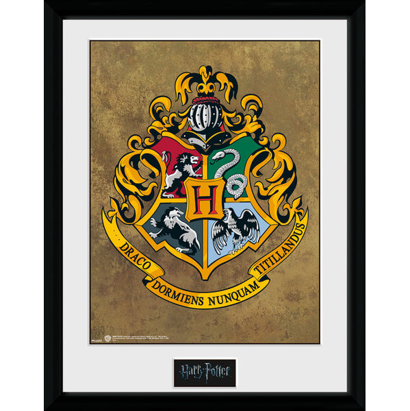 Harry Potter Hogwarts Framed Photographic - 16