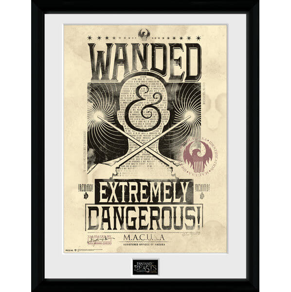 Fantastic Beasts Wanted Framed Album Cover - 12
