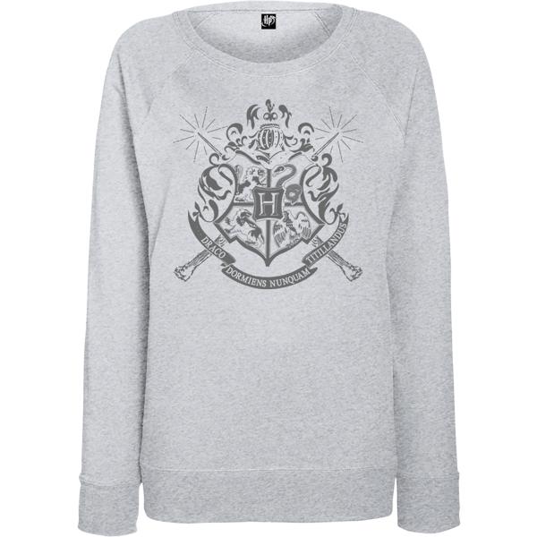 Harry Potter Draco Dormiens Nunquam Titillandus Men's Grey Sweatshirt