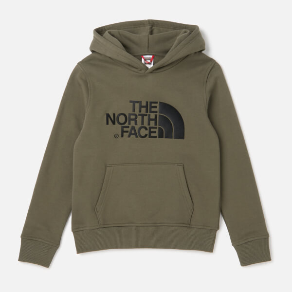 71f17376eedf The North Face Kids  Drew Peak Pull Over Hoodie - New Taupe Green ...