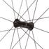 Campagnolo Bora One 50 Tubular Wheelset: Image 4