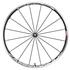 Campagnolo Eurus 2-WayFit Wheelset - Black: Image 1