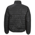Brave Soul Men's Laing Matt Padded Jacket - Black: Image 2