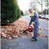 HHB 25 E Leaf Blower: Image 2