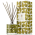 Orla Kiely Reed Diffuser - Fig Tree: Image 1
