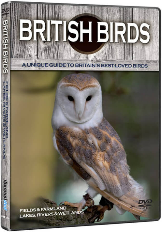 british-birds-fields-farmlands