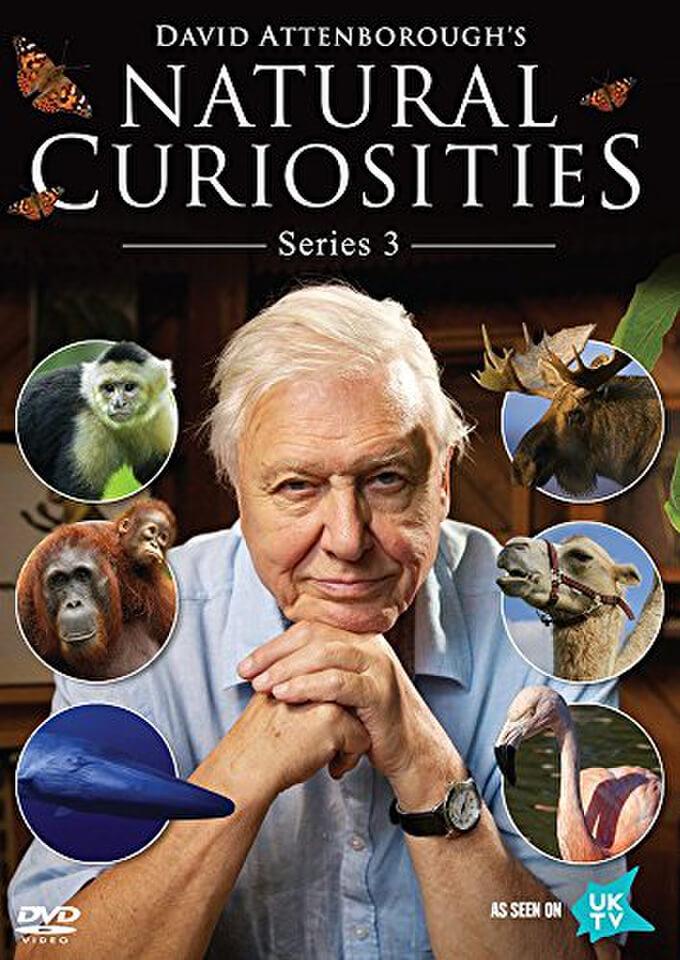 david-attenborough-natural-curiosities-series-3