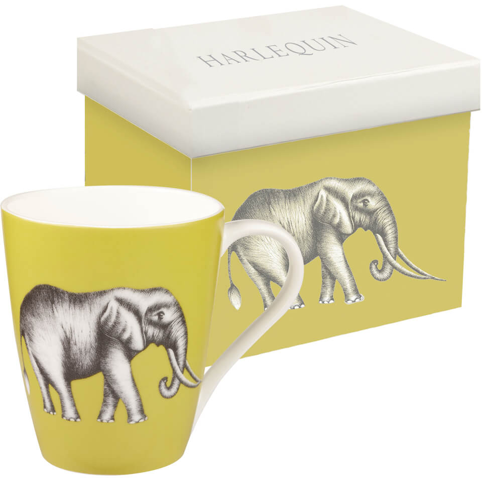 harlequin-savanna-aspen-mug-gift-box-gooseberry
