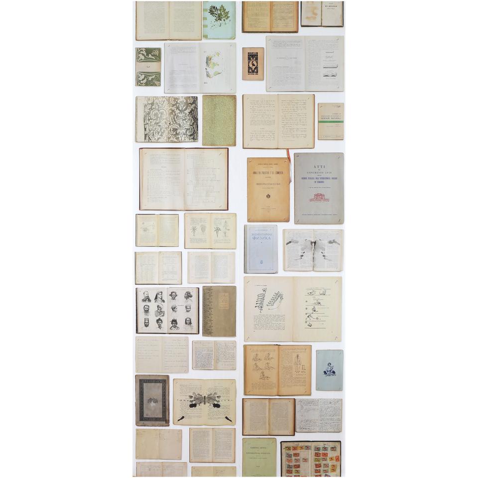 nlxl-biblioteca-wallpaper-by-ekaterina-panikanova-for-use-with-eka-01-04
