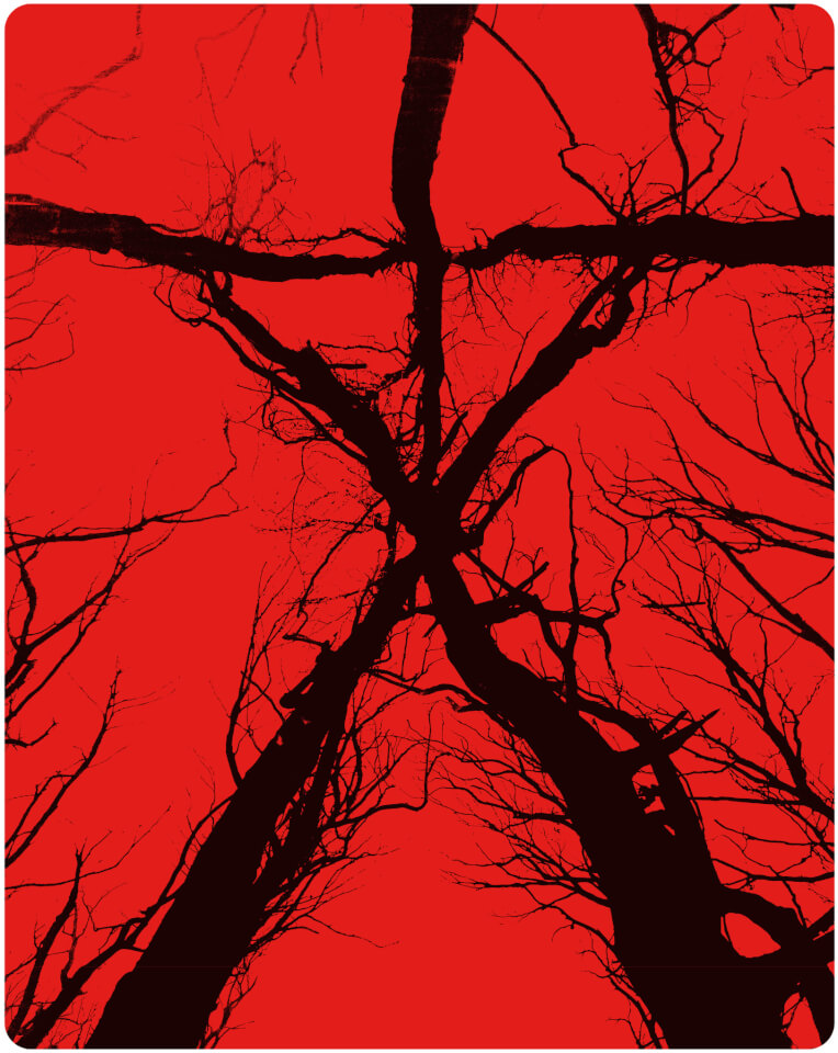 blair-witch-zavvi-exclusive-edition-steelbook