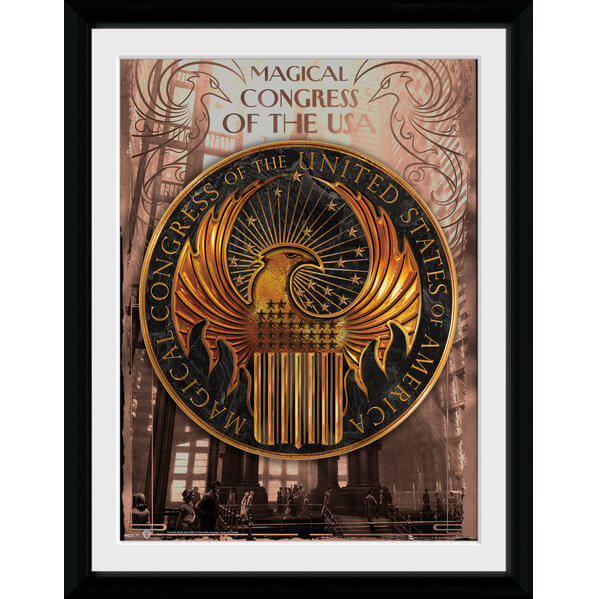 fantastic-beasts-magical-congress-framed-album-cover-12-x-12