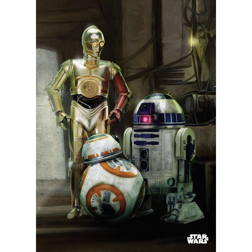 Tin PostersStar Wars Metal Poster - Episode VII Droids(68 x 48cm )