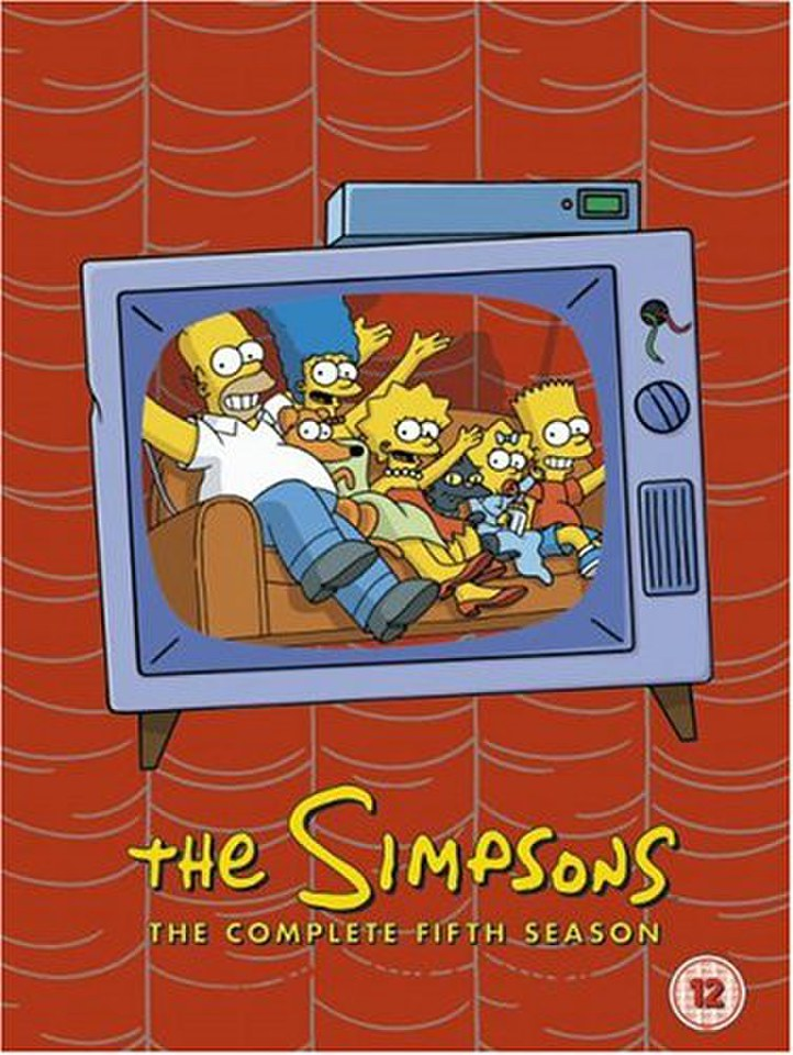 the-simpsons-complete-season-5-box-set