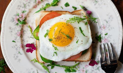 Comment obtenir plus de Protéines dans votre Alimentation?
