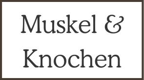 Muskel & Knochen