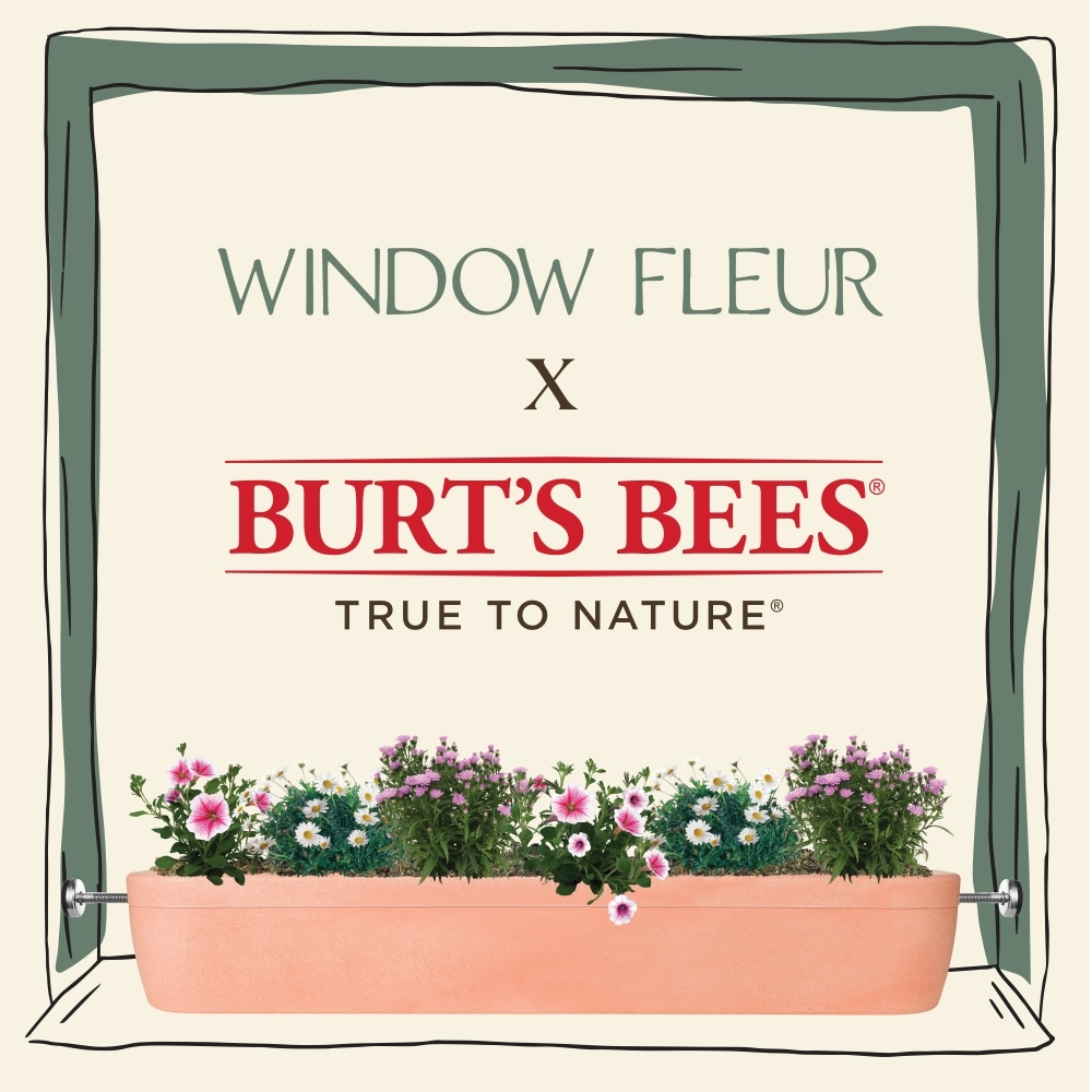 Window Fleur's Collaboration with Burt's Bees