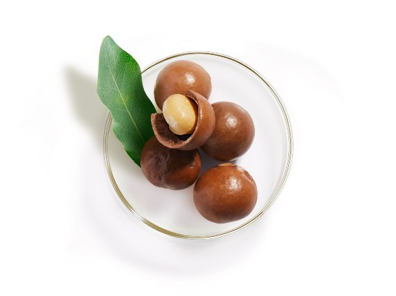 Hazelnut. The beauty ally with moisturising and protective properties.Find out more.