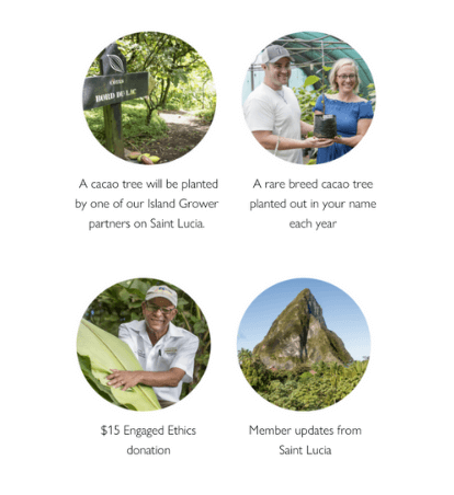 1)  A cacao tree will be planted by one of our Island Grower partners on Saint Lucia., 2) A rare breed cacao tree planted out in your name each year, 3) $15 Engaged Ethics donation, 4) Member updates from Saint Lucia
