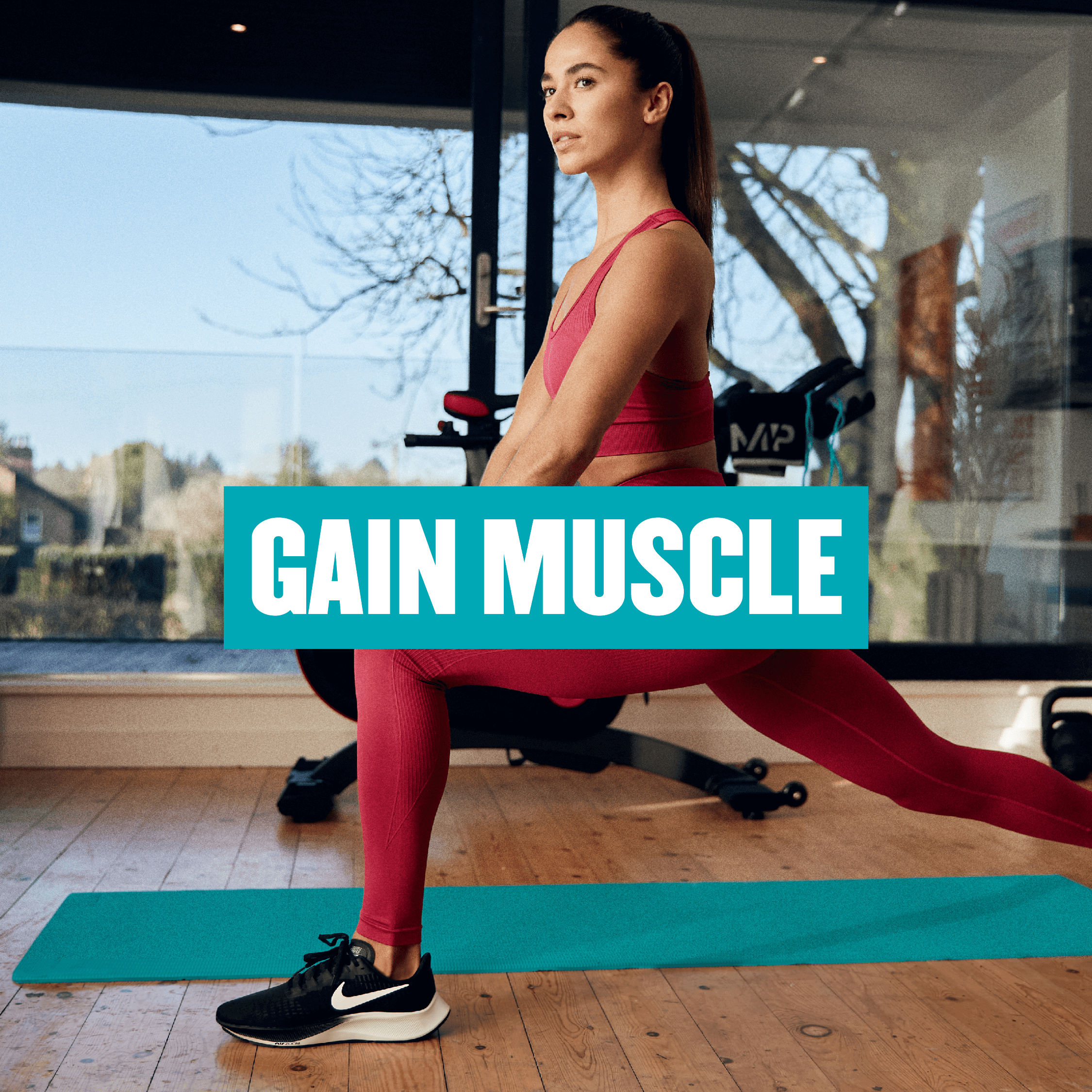 Gain Muscle